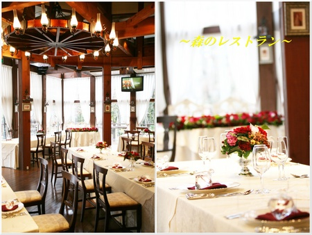 森のレストラン1.jpg